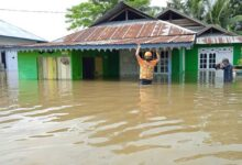 Floods inundate hundreds of houses in Indonesia