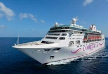 The curious case of NCB cruise bust